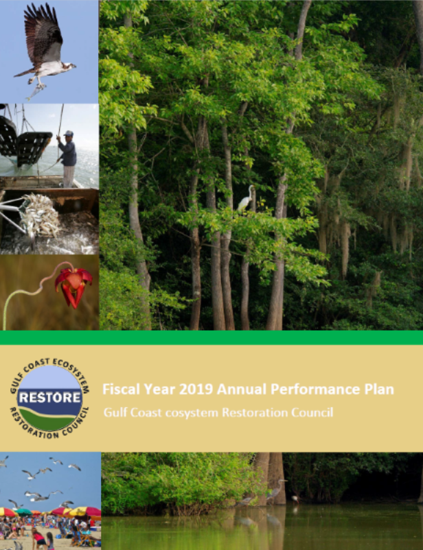 Cover Fiscal Year 2019 Annual Performance Plan