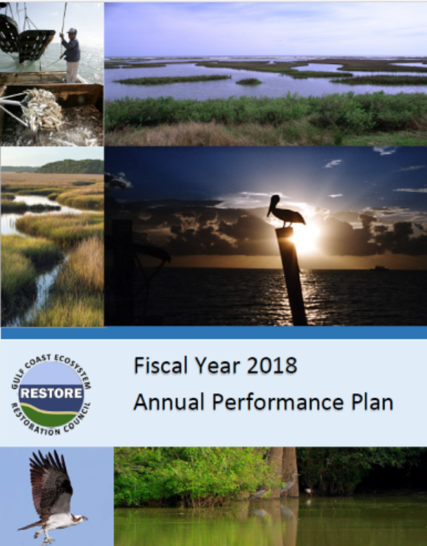 Cover of 2018 Annual Performance Plan