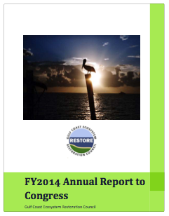 FY2014 Report to Congress Cover Image