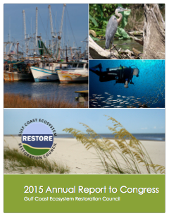 2015 Report to Congress Cover Image